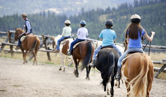 Girl guides in horse riding class